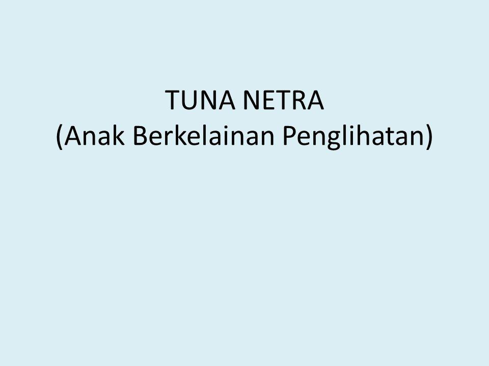 Klasifikasi Tuna Netra Bukan Tuna Netra Tuna Netra Ringan Tuna Netra Berat