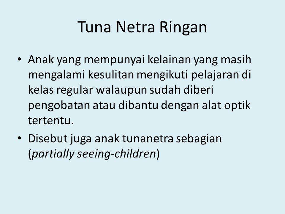 Tuna Netra Berat (buta) Anak yang mengalami kelainan penglihatan yang tidak dapat dibantu melalui pengobatan maupun alat optik apa pun karena anak tidak mampu lagi memanfaatkan penglihatannya.