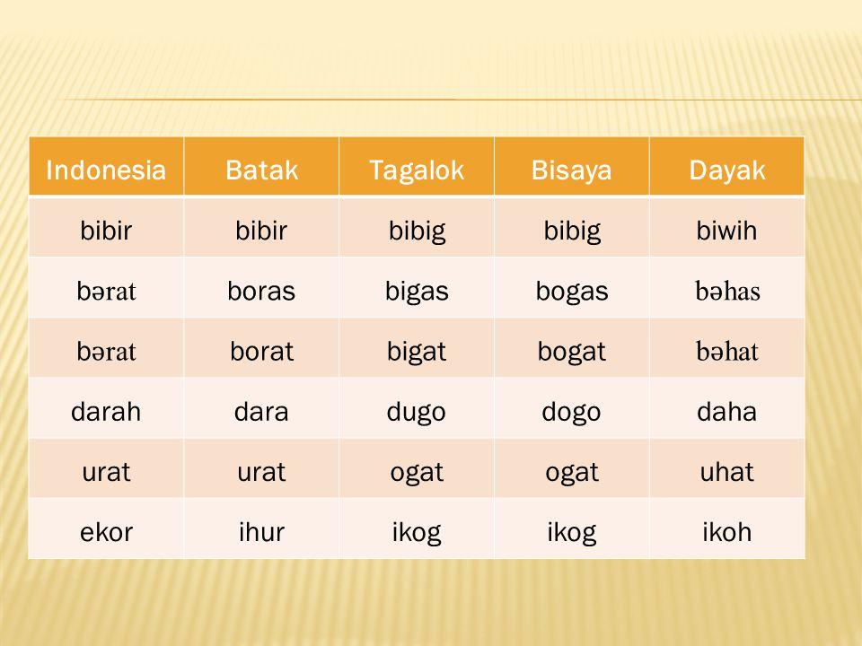 IndonesiaBatakTagalokBisayaDayak bibir bibig biwih b ǝ rat borasbigasbogas b ǝ has b ǝ rat boratbigatbogat b ǝ hat darahdaradugodogodaha urat ogat uha