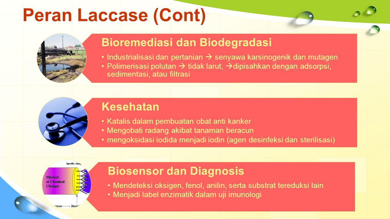 Peran Laccase (Cont) Bioremediasi dan Biodegradasi Industrialisasi dan pertanian  senyawa karsinogenik dan mutagen Polimerisasi polutan  tidak larut