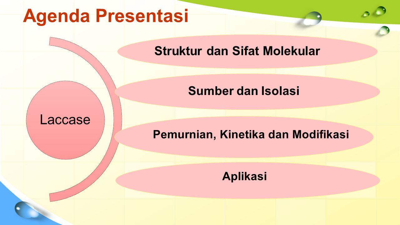 Agenda Presentasi Laccase Struktur dan Sifat Molekular Sumber dan Isolasi Pemurnian, Kinetika dan Modifikasi Aplikasi