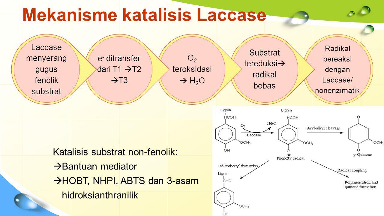 Mekanisme katalisis Laccase Radikal bereaksi dengan Laccase/ nonenzimatik Substrat tereduksi  radikal bebas O2 teroksidasi  H2O e - ditransfer dari