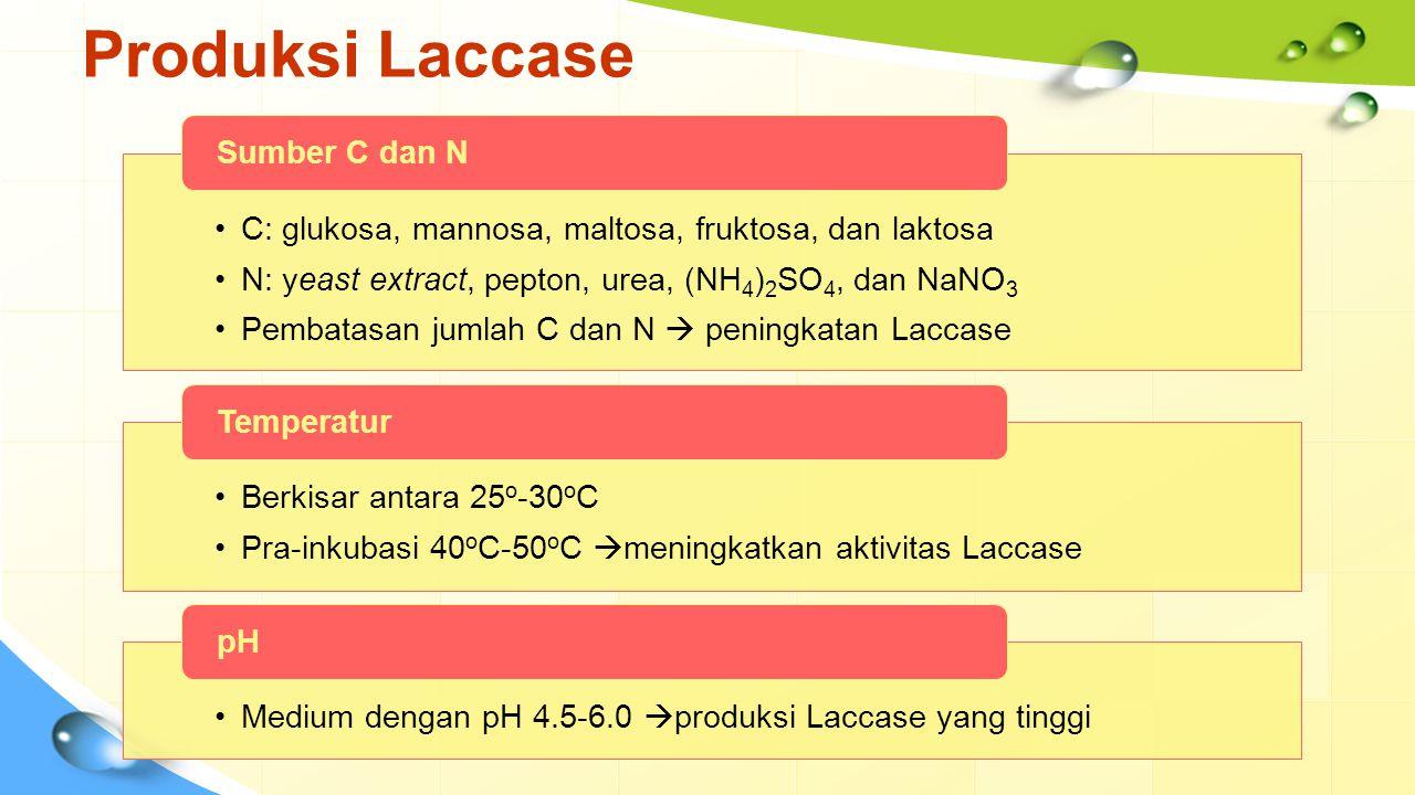 Produksi Laccase (Cont) Menyebabkan miselia jamur rusak  turunnya produksi Laccase, Pengadukan Senyawa xenobiotik/ logam berat (2,5-xilidin, lignin, veratril alkohol)  meningkatkan dan menginduksi aktivitas Laccase.