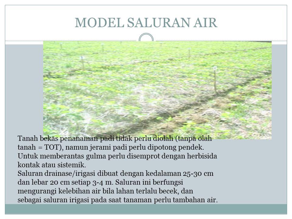 MODEL SALURAN AIR Tanah bekas penanaman padi tidak perlu diolah (tanpa olah tanah = TOT), namun jerami padi perlu dipotong pendek.