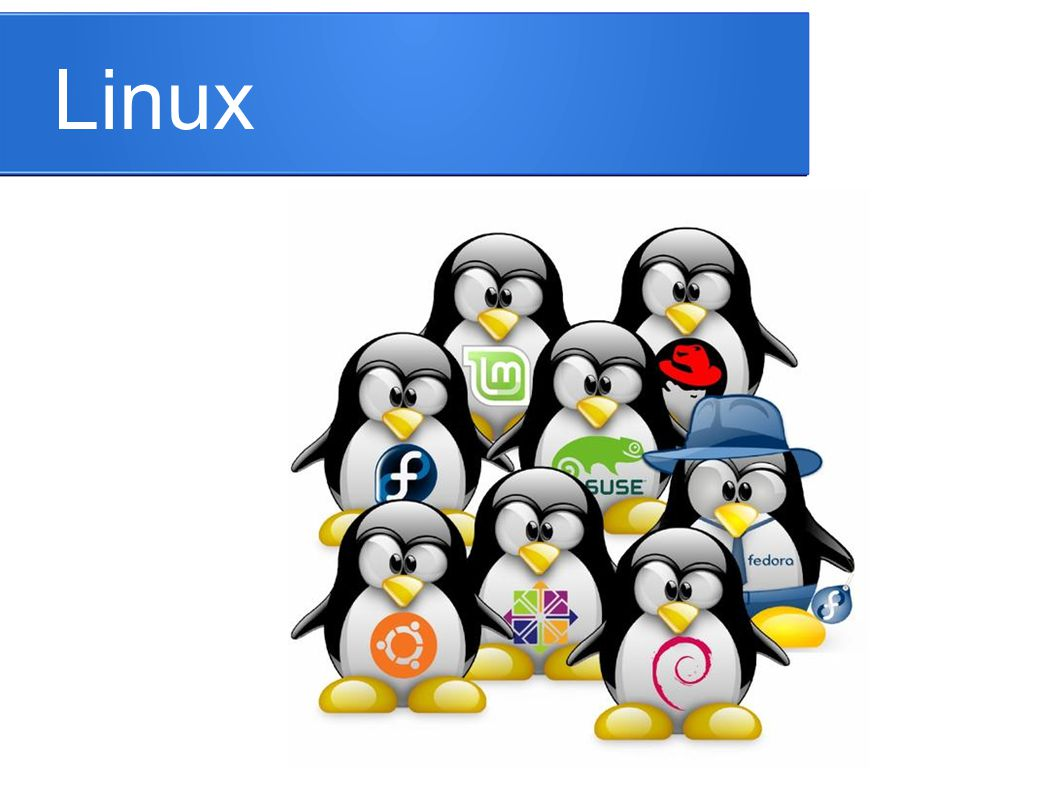 Apa itu Linux .