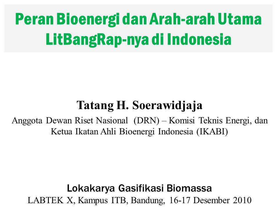 Peran Bioenergi dan Arah-arah Utama LitBangRap-nya di Indonesia Tatang H.