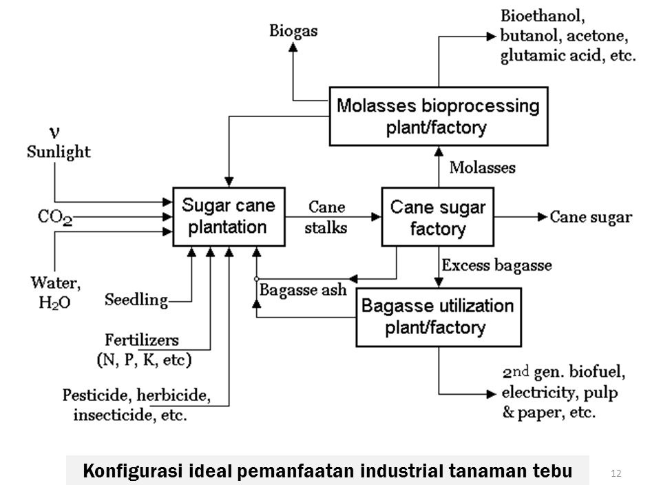 Konfigurasi ideal pemanfaatan industrial tanaman tebu 12