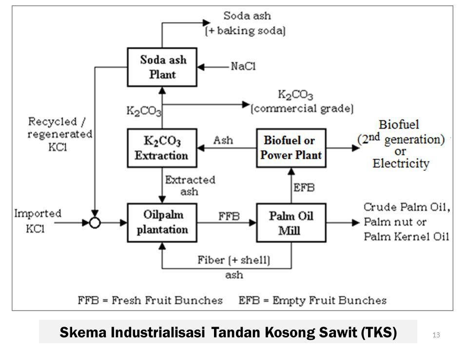 Skema Industrialisasi Tandan Kosong Sawit (TKS) 13