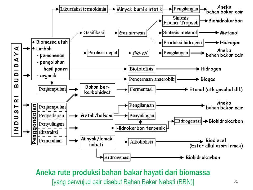 Aneka rute produksi bahan bakar hayati dari biomassa [yang berwujud cair disebut Bahan Bakar Nabati (BBN)] 31
