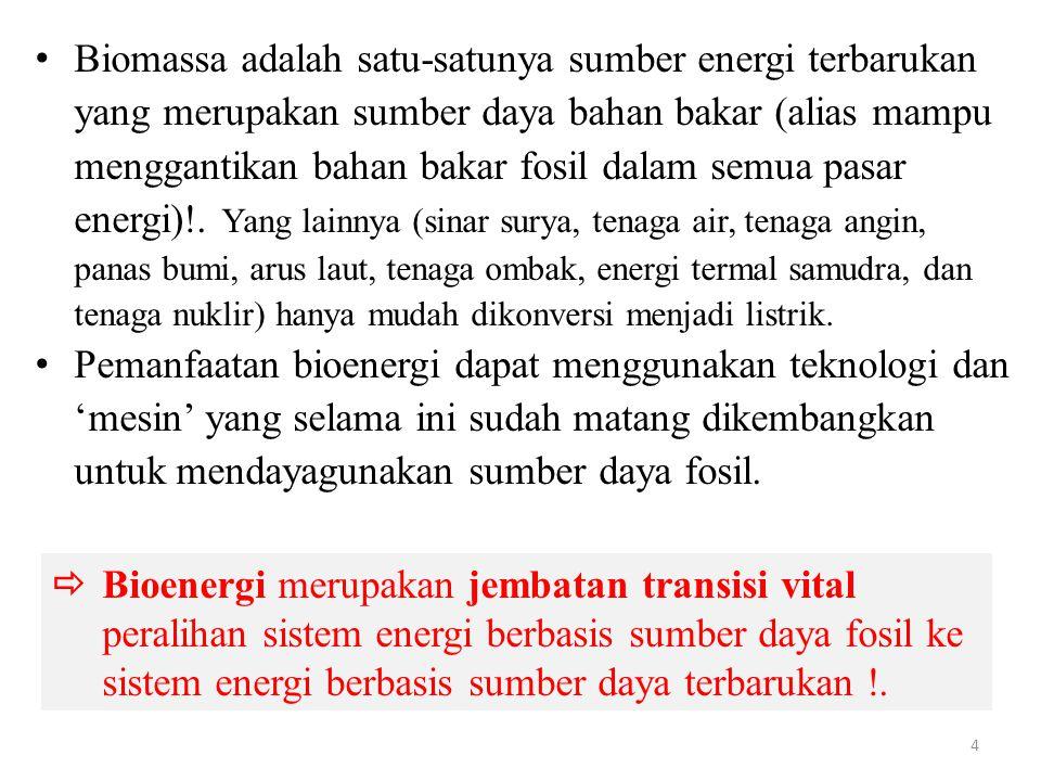Biomassa adalah satu-satunya sumber energi terbarukan yang merupakan sumber daya bahan bakar (alias mampu menggantikan bahan bakar fosil dalam semua pasar energi)!.