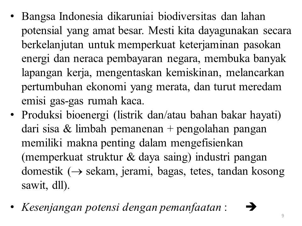 9 Bangsa Indonesia dikaruniai biodiversitas dan lahan potensial yang amat besar.