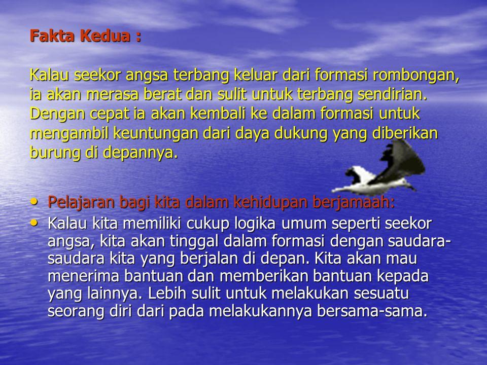 Fakta Kedua : Kalau seekor angsa terbang keluar dari formasi rombongan, ia akan merasa berat dan sulit untuk terbang sendirian. Dengan cepat ia akan k