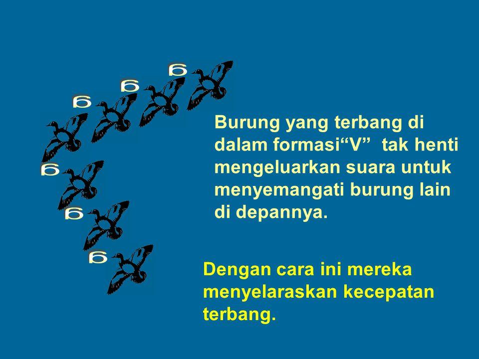 "Burung yang terbang di dalam formasi""V"" tak henti mengeluarkan suara untuk menyemangati burung lain di depannya. Dengan cara ini mereka menyelaraskan"