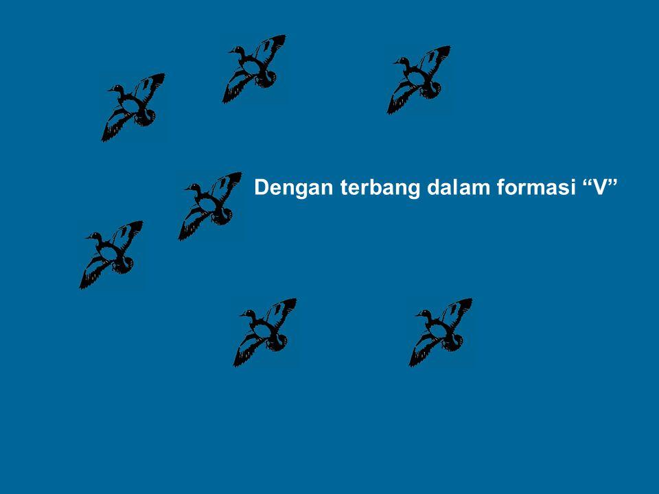 """Dengan terbang dalam formasi """"V"""""""
