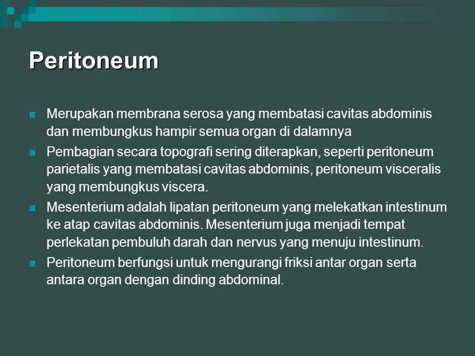 Peritoneum Merupakan membrana serosa yang membatasi cavitas abdominis dan membungkus hampir semua organ di dalamnya Pembagian secara topografi sering