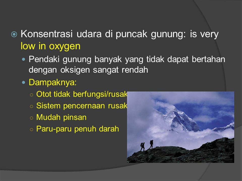  Konsentrasi udara di puncak gunung: is very low in oxygen Pendaki gunung banyak yang tidak dapat bertahan dengan oksigen sangat rendah Dampaknya: ○