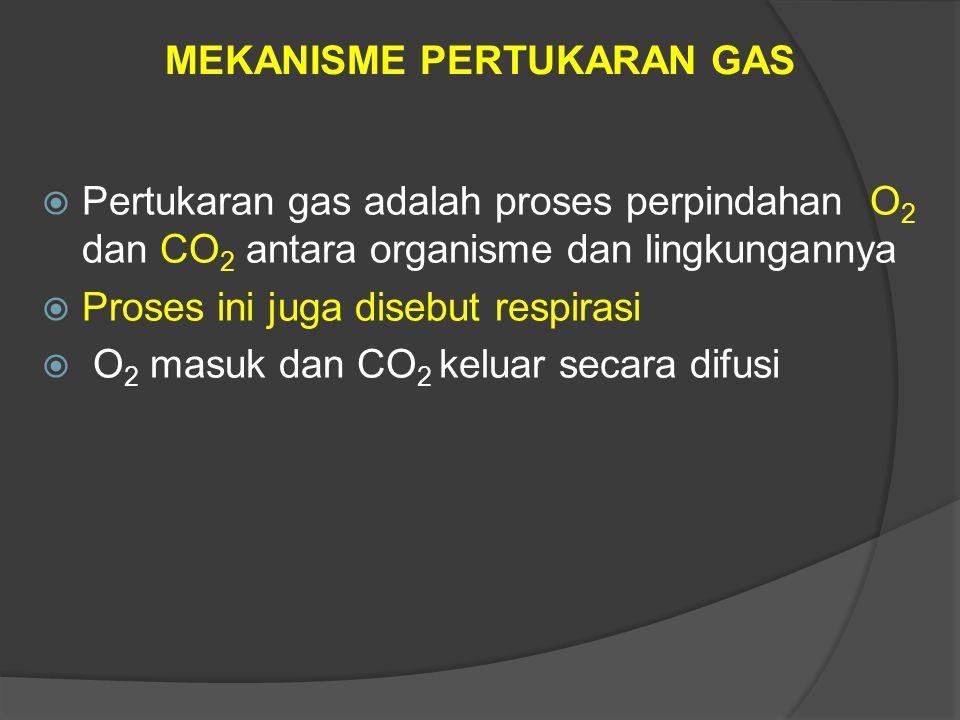  Pertukaran gas adalah proses perpindahan O 2 dan CO 2 antara organisme dan lingkungannya  Proses ini juga disebut respirasi  O 2 masuk dan CO 2 ke