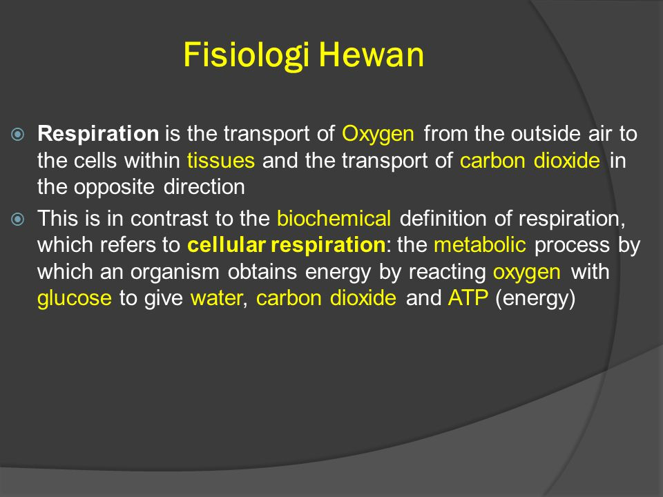 Fisiologi Hewan  Respiration is the transport of Oxygen from the outside air to the cells within tissues and the transport of carbon dioxide in the opposite direction  This is in contrast to the biochemical definition of respiration, which refers to cellular respiration: the metabolic process by which an organism obtains energy by reacting oxygen with glucose to give water, carbon dioxide and ATP (energy)