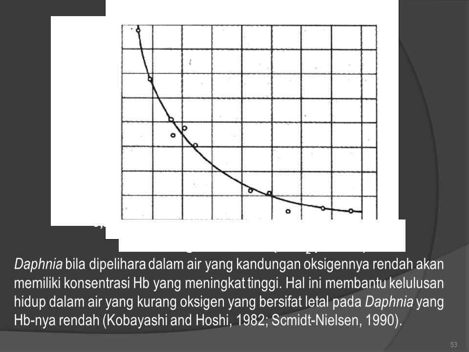 53 Hemoglobin dalam darah (g Hb per 100 ml ) 1,6 1,4 1,2 1,0 0,8 0,6 0,4 0,2 1 2 3 4 5 6 7 8 Oksigen dalam air (ml O 2 per liter) Daphnia bila dipelih