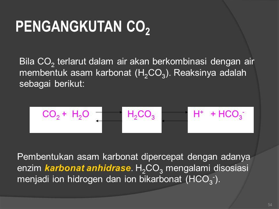 54 PENGANGKUTAN CO 2 Bila CO 2 terlarut dalam air akan berkombinasi dengan air membentuk asam karbonat (H 2 CO 3 ). Reaksinya adalah sebagai berikut: