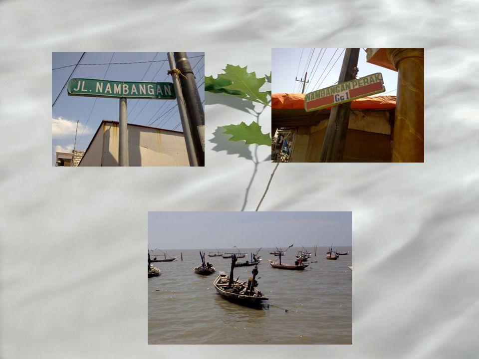 Kwalitas Air Kampung Nelayan disisni pada umumnya menggunakan air PDAM