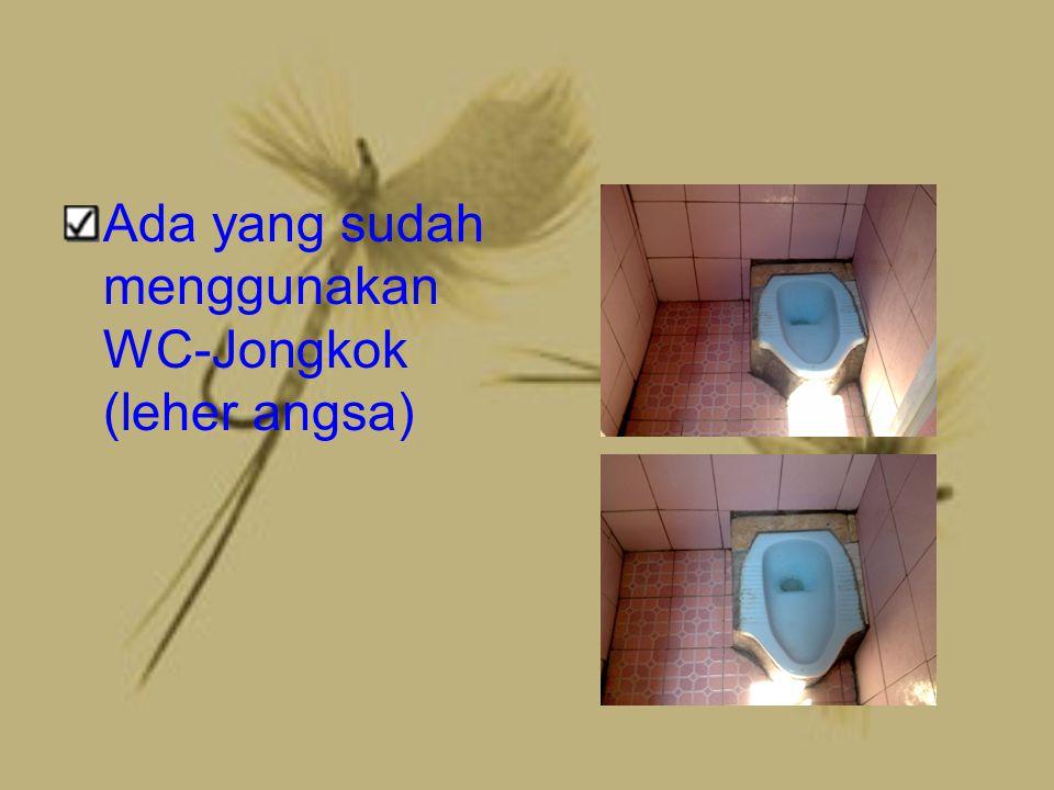 Ada yang sudah menggunakan WC-Jongkok (leher angsa)