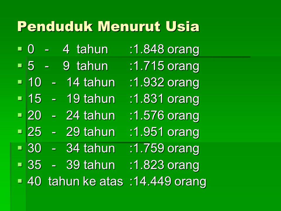 Penduduk Menurut Usia  0 - 4 tahun :1.848 orang  5 - 9 tahun:1.715 orang  10 - 14 tahun:1.932 orang  15 - 19 tahun:1.831 orang  20 - 24 tahun:1.5
