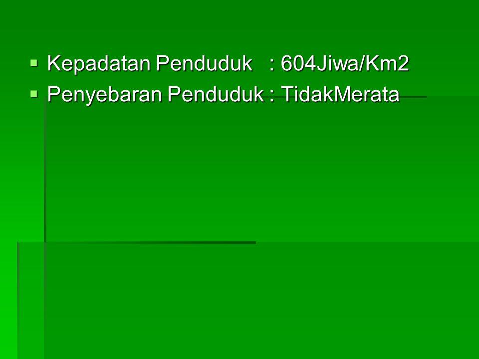  Kepadatan Penduduk : 604Jiwa/Km2  Penyebaran Penduduk : TidakMerata