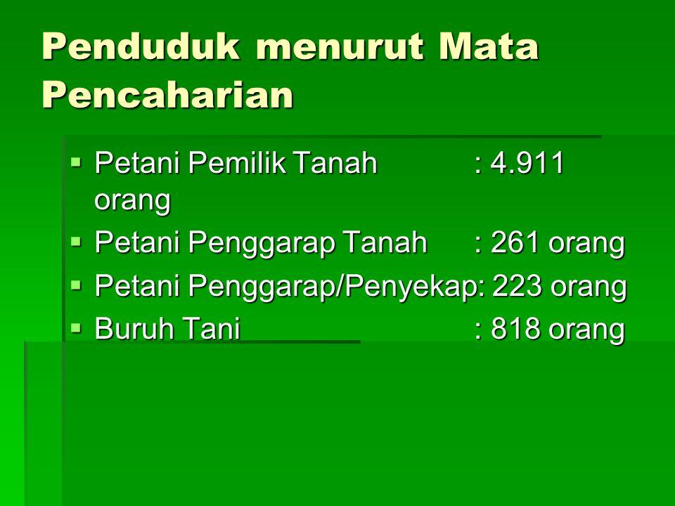 Penduduk menurut Mata Pencaharian  Petani Pemilik Tanah: 4.911 orang  Petani Penggarap Tanah: 261 orang  Petani Penggarap/Penyekap: 223 orang  Bur
