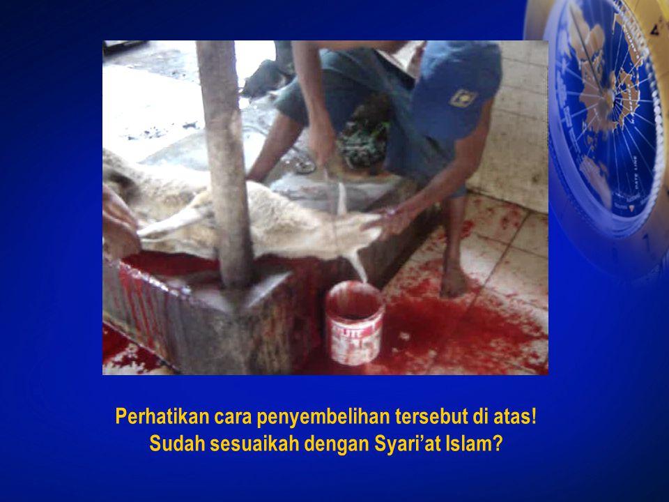 Perhatikan cara penyembelihan tersebut di atas! Sudah sesuaikah dengan Syari'at Islam?