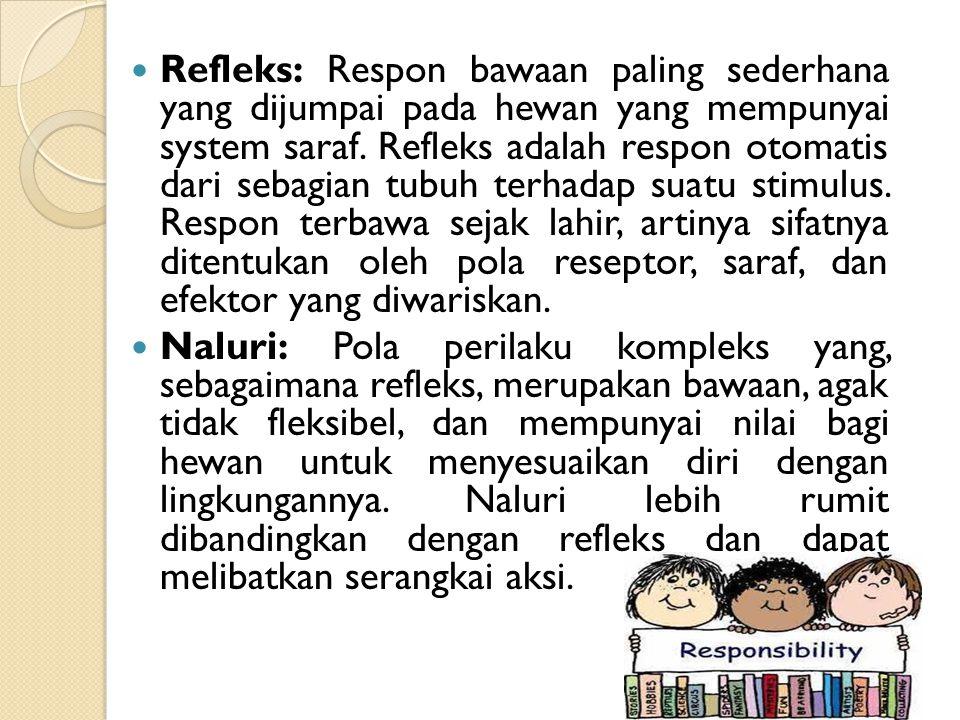 Refleks: Respon bawaan paling sederhana yang dijumpai pada hewan yang mempunyai system saraf. Refleks adalah respon otomatis dari sebagian tubuh terha
