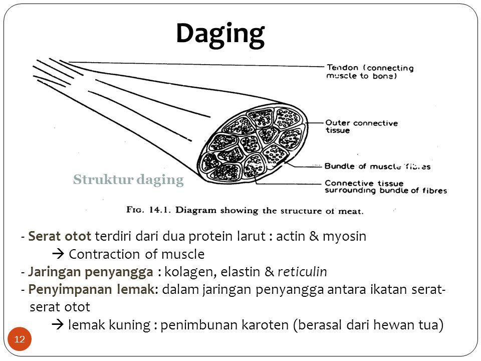 Daging Struktur daging - Serat otot terdiri dari dua protein larut : actin & myosin  Contraction of muscle - Jaringan penyangga : kolagen, elastin &