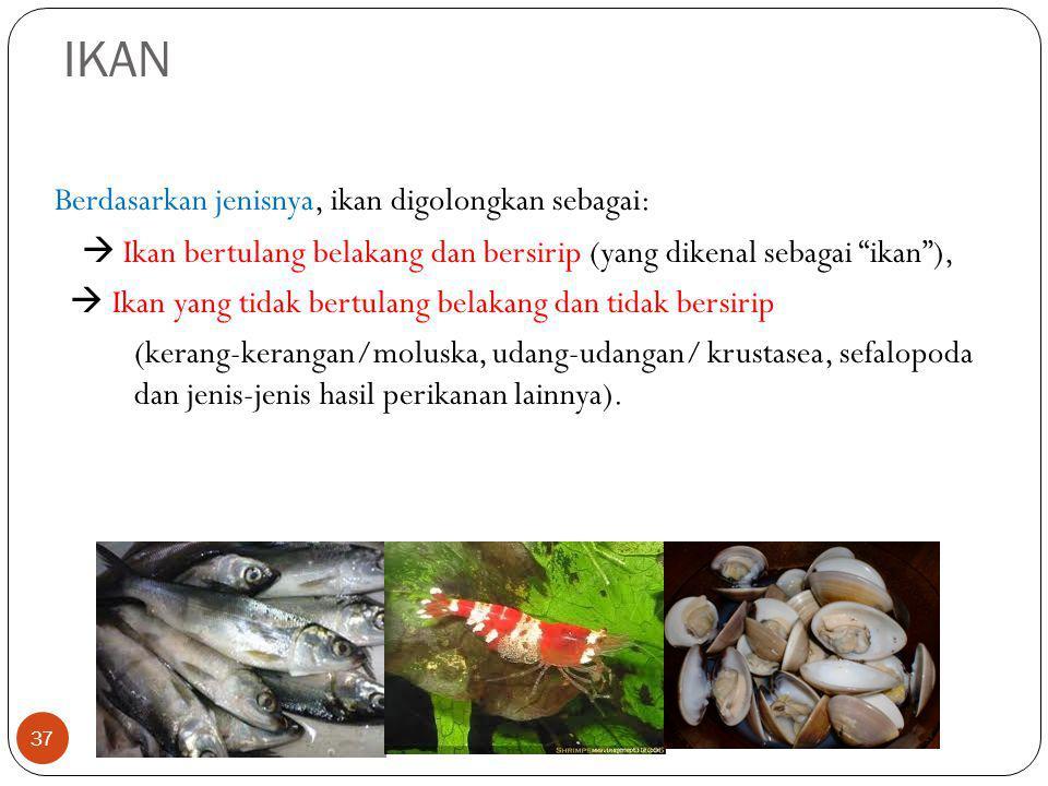 """IKAN 37 Berdasarkan jenisnya, ikan digolongkan sebagai:  Ikan bertulang belakang dan bersirip (yang dikenal sebagai """"ikan""""),  Ikan yang tidak bertul"""