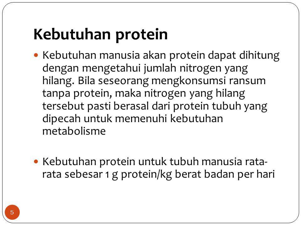 Kebutuhan protein 5 Kebutuhan manusia akan protein dapat dihitung dengan mengetahui jumlah nitrogen yang hilang. Bila seseorang mengkonsumsi ransum ta