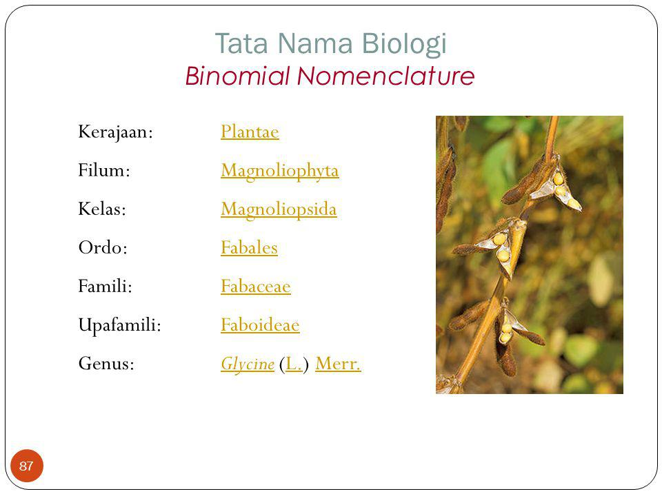 Kerajaan:Plantae Filum:Magnoliophyta Kelas:Magnoliopsida Ordo:Fabales Famili:Fabaceae Upafamili:Faboideae Genus:GlycineGlycine (L.) Merr.L.Merr. Tata