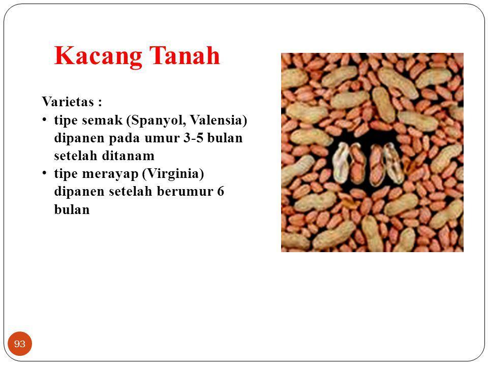 93 Kacang Tanah Varietas : tipe semak (Spanyol, Valensia) dipanen pada umur 3-5 bulan setelah ditanam tipe merayap (Virginia) dipanen setelah berumur
