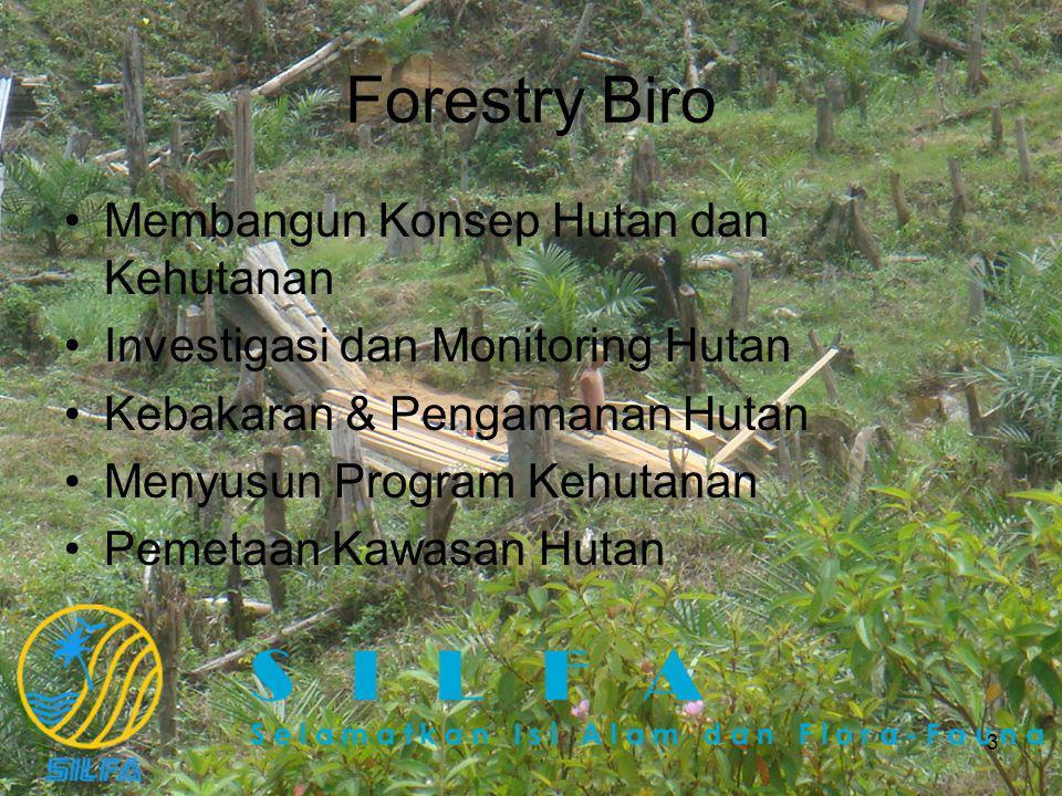 3 Forestry Biro Membangun Konsep Hutan dan Kehutanan Investigasi dan Monitoring Hutan Kebakaran & Pengamanan Hutan Menyusun Program Kehutanan Pemetaan Kawasan Hutan