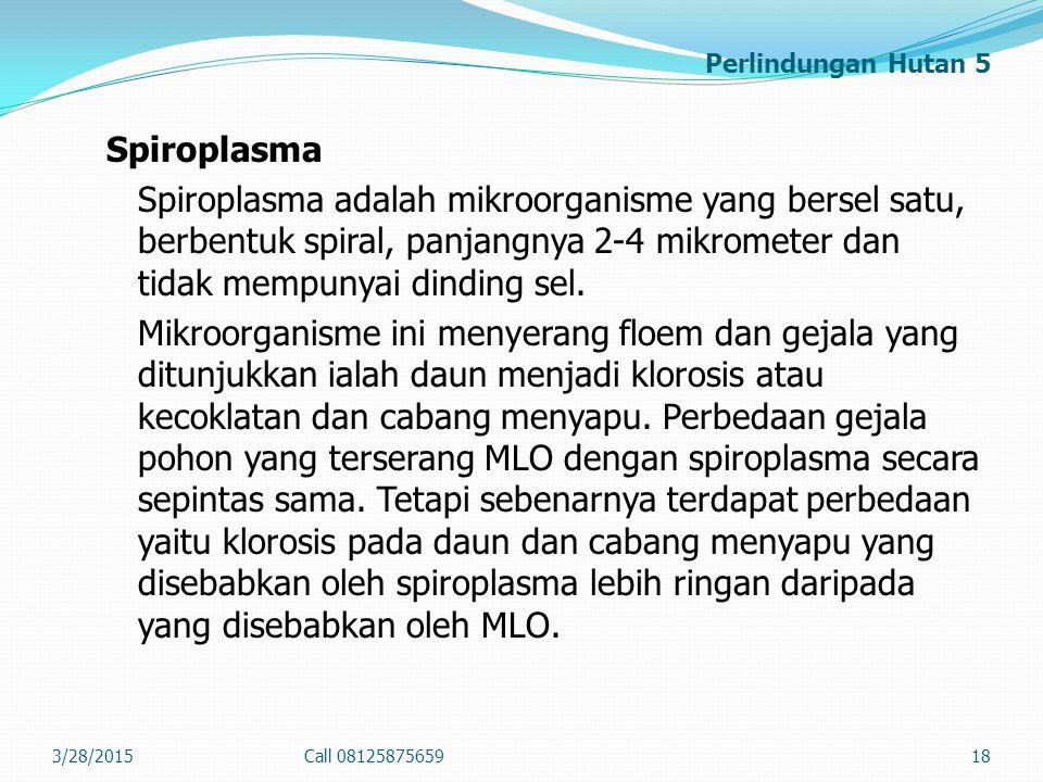 Perlindungan Hutan 5 Spiroplasma Spiroplasma adalah mikroorganisme yang bersel satu, berbentuk spiral, panjangnya 2-4 mikrometer dan tidak mempunyai d