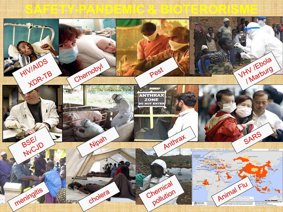 meningitis Animal Flu Chemical pollution cholera SAFETY-PANDEMIC & BIOTERORISME BSE/ NvCJD Nipah Anthrax SARS HIV/AIDS XDR-TB Chernobyl Pest VHV /Ebol