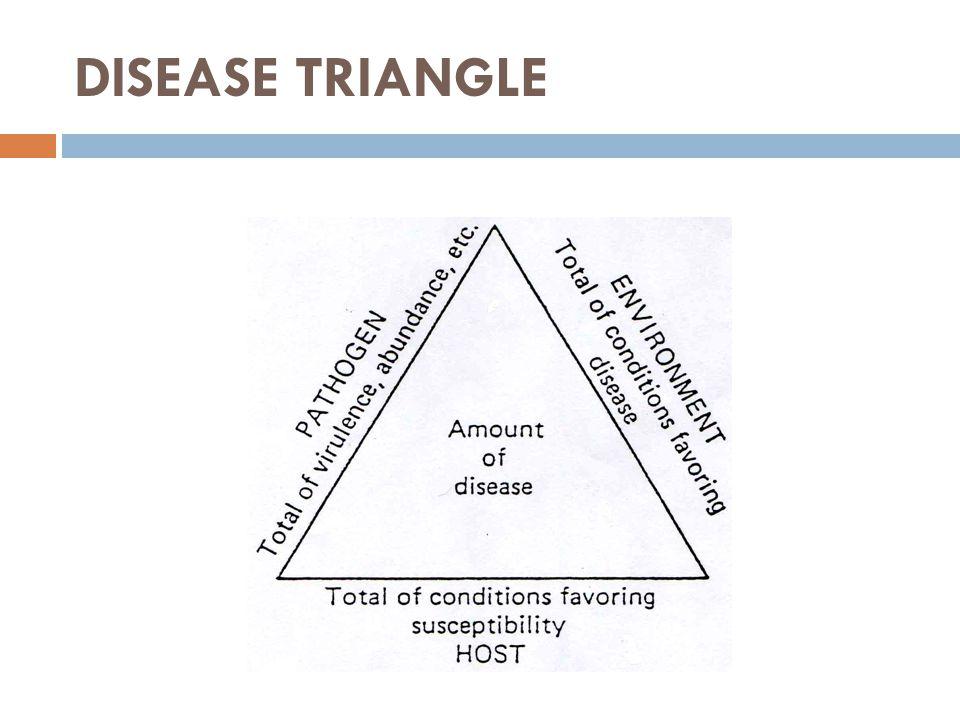 Penyk berkembang dg baik bila :  Tdp kelimpahan tnm inang yg rentan, dan  Patogen yg virulen dan agresif, serta  Didukung lingkungan yg kondusif untuk perkembangan/penyebaran patogen secara cepat