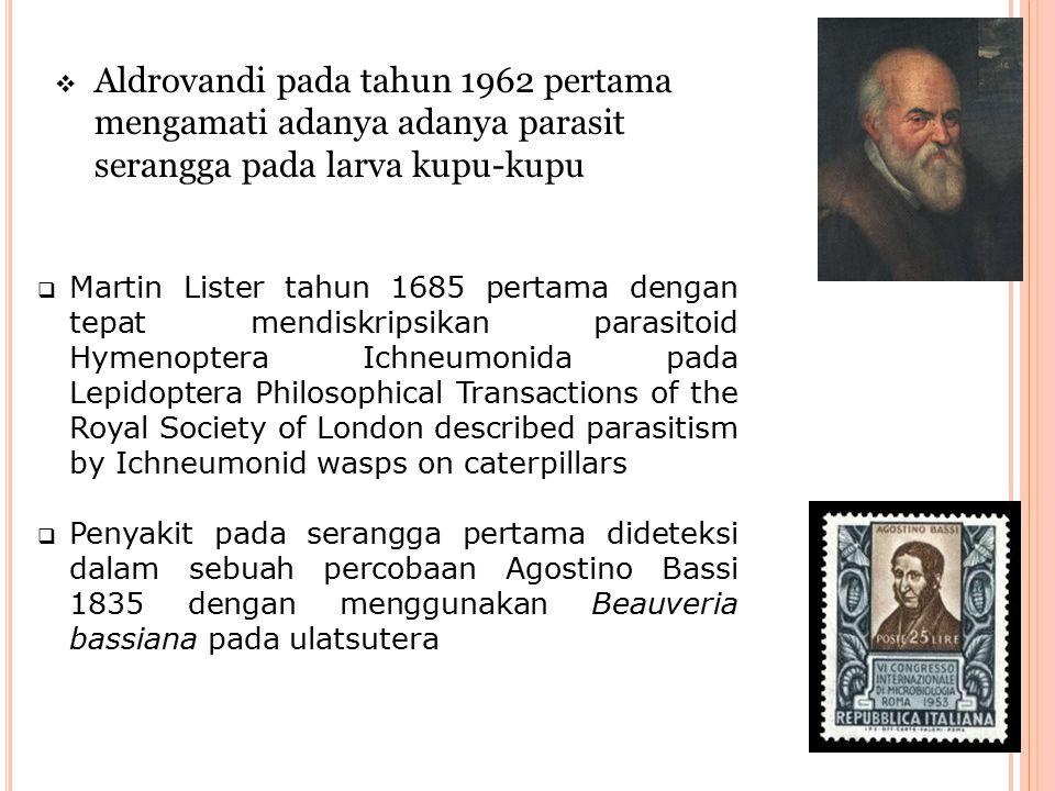  Aldrovandi pada tahun 1962 pertama mengamati adanya adanya parasit serangga pada larva kupu-kupu  Martin Lister tahun 1685 pertama dengan tepat men