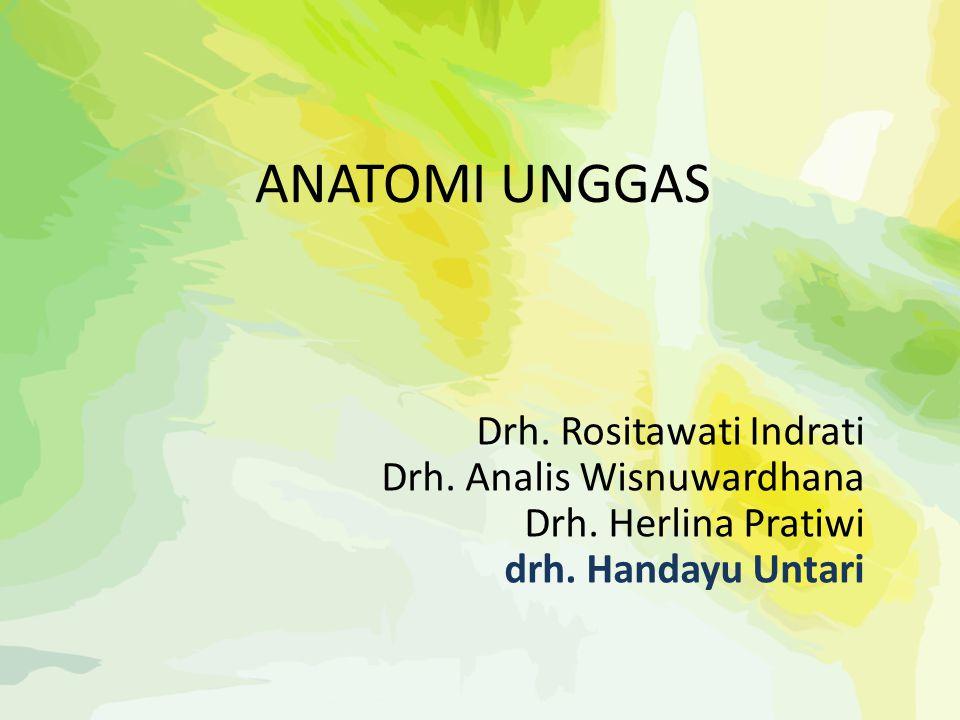 ANATOMI UNGGAS Drh. Rositawati Indrati Drh. Analis Wisnuwardhana Drh. Herlina Pratiwi drh. Handayu Untari