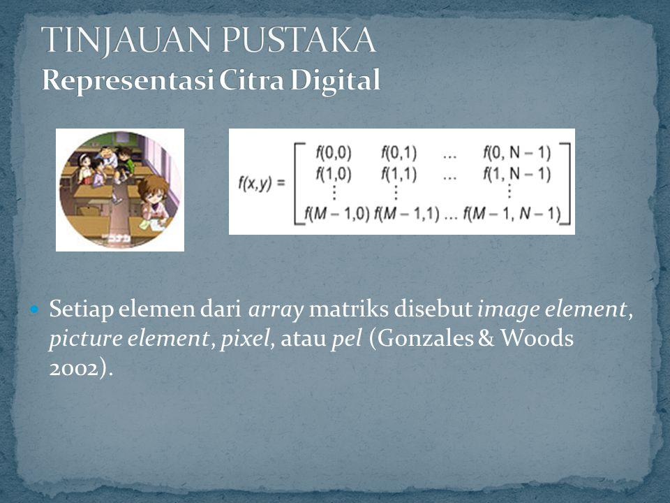 Setiap elemen dari array matriks disebut image element, picture element, pixel, atau pel (Gonzales & Woods 2002).
