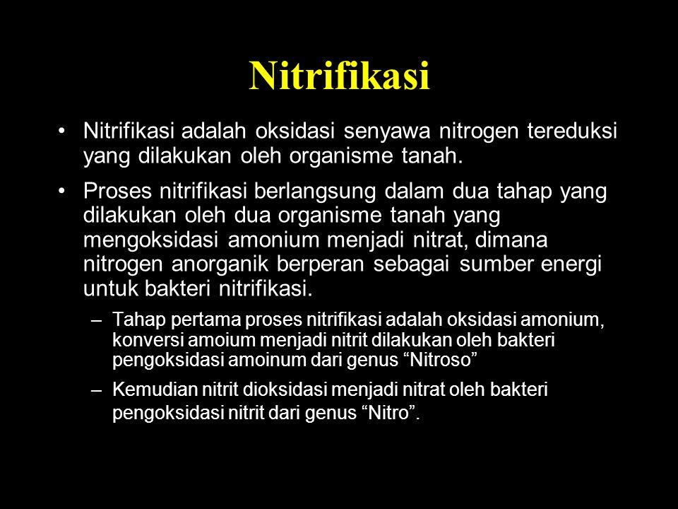 Nitrifikasi Nitrifikasi adalah oksidasi senyawa nitrogen tereduksi yang dilakukan oleh organisme tanah. Proses nitrifikasi berlangsung dalam dua tahap