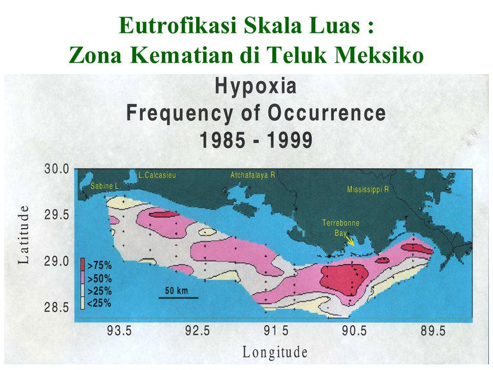 Eutrofikasi Skala Luas : Zona Kematian di Teluk Meksiko