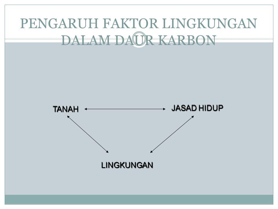TRANSFORMASI HIDROKARBON MELIBATKAN JASAD MAKRO DAN MIKRO TRANSFORMASI ADA 2 : 1. NON BIOLOGI 2. BIOLOGI : a. Senyawa hk diubah menjadi suatu metaboli