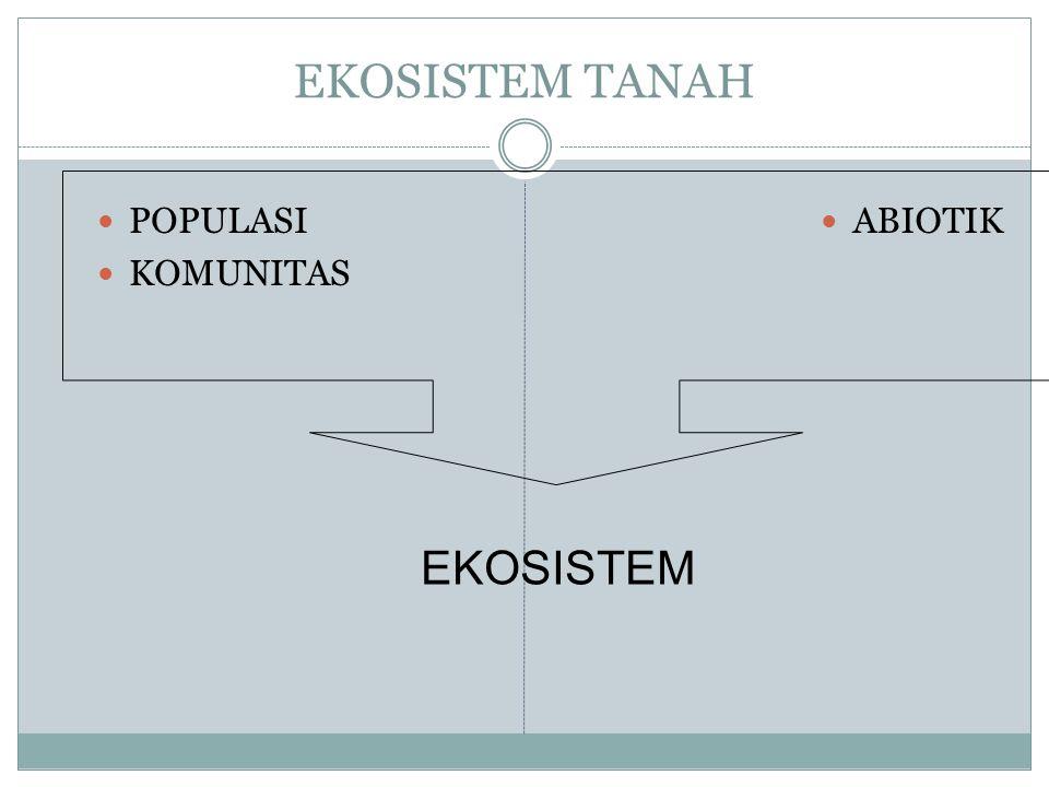 EKOSISTEM TANAH POPULASI KOMUNITAS ABIOTIK EKOSISTEM