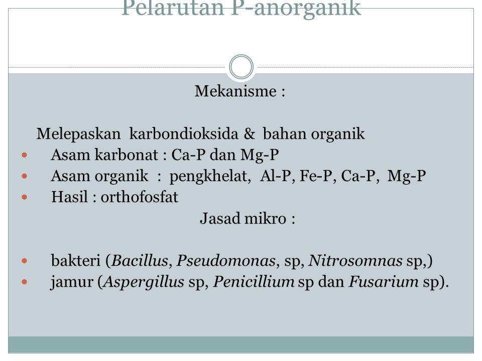 MINERALISASI P-ORGANIK Enzim : fosfatase (ekstraseluler) Jenis : fosfomonoesterase, fosfodiesterase, phytase Mineralisasi vs rasio C/P < 200/1 : miner