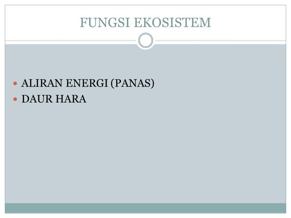 KONDISI REDUKSI & KETERSEDIAAN P PENGARUH : Fe-P dan Al-P FAKTOR : PENGGENANGAN DAN BO AKIBAT : reduksi ferro-P menjadi ferri-P