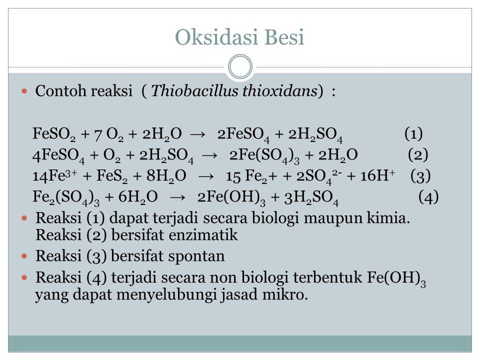 Pelarutan Besi Pelaku : jasad mikro Mekanisme : metabolit dgn afinitas tinggi terhadap Fe 3+ Contoh : asam dan senyawa organik. Pelarutan terjadi pada